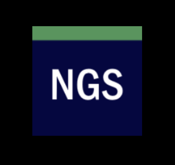Newcastle Garage Services Ltd logo