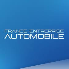 FE Automobiles - Courbevoie  logo